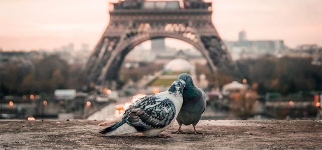 Proč romantický víkend v Paříži, jak naplánovat dovolenou pro dva